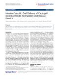 "Báo cáo hóa học: "" Intestine-Specific, Oral Delivery of Captopril/ Montmorillonite: Formulation and Release Kinetics"""