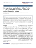 """Báo cáo hóa học: """"  Biomagnetic of Apatite-Coated Cobalt Ferrite: A Core–Shell Particle for Protein Adsorption and pH-Controlled Release"""""""