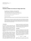 "Báo cáo hóa học: "" Research Article Estimation of Radar Cross Section of a Target under Track"""