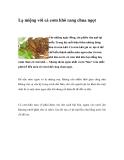 Lạ miệng với cá cơm khô rang chua ngọt