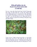 Biến phế phẩm của cây thanh long thành phân hữu cơ sinh học