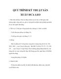 QUY TRÌNH KỸ THUẬT SẢN XUẤT DƯA LEO