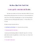 Ra Hoa- Đậu Trái- Nuôi Trái CAM- QUÍT- CHANH- BƯỞI (P1)