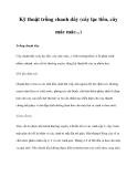 Kỹ thuật trồng chanh dây (cây lạc tiên, cây mác mác...)