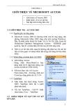 Tài liệu Microsoft Access 2003