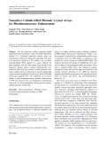 """Báo cáo hóa học: """"   Nanosilver Colloids-Filled Photonic Crystal Arrays for Photoluminescence Enhancement"""""""