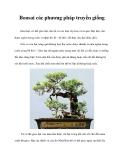 Bonsai các phương pháp nhân giống