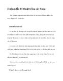 Hướng dẫn kỹ thuật trồng cây Sung