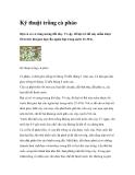 Kỹ thuật trồng cà pháo