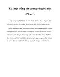 Kỹ thuật trồng cây xương rồng bát tiên (Phần 1)
