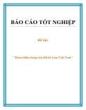Đề tài: Hoàn thiện bảng cân đối kế toán Việt Nam