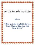 Báo cáo: Hiệu quả đầu tư phát triển của Tổng Công ty Điện Lực Việt Nam (EVN)