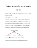 Quản lý dịch hại tổng hợp (IPM) trên cây lúa