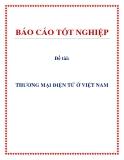 Đề tài: Thương mại điện tử ở Việt Nam