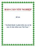 Đề tài: Sự hình thành và phát triển của các bộ máy tổ chức kiểm toán Việt Nam