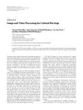 """báo cáo hóa học:""""   Editorial Image and Video Processing for Cultural Heritage Vincent Charvillat,1 Anna Tonazzini (EURASIP Member),2 Luc Van Gool,3, 4 and Nikos Nikolaidis (EURASIP Member)5 1 IRIT,"""""""