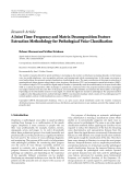 """Báo cáo hóa học: """"Research Article A Joint Time-Frequency and Matrix Decomposition Feature Extraction Methodology for Pathological Voice Classification"""""""