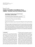 "Báo cáo hóa học: "" Research Article Imaging Arterial Fibres Using Diffusion Tensor Imaging—Feasibility Study and Preliminary Results"""