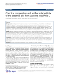 """Báo cáo hóa học: """" Chemical composition and antibacterial activity of the essential oils from Launaea resedifolia L"""""""
