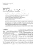 "Báo cáo hóa học: "" Research Article Colour Image Segmentation Using Homogeneity Method and Data Fusion Technique"""