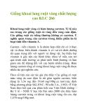 Giống khoai lang ruột vàng chất lượng cao KLC 266