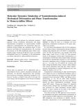 "Báo cáo hóa học: ""  Molecular Dynamics Simulation of Nanoindentation-induced Mechanical Deformation and Phase Transformation in Monocrystalline Silicon"""