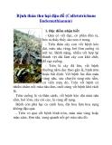Bệnh thán thư hại đậu đỗ (Colletotrichum lindemuthianum)