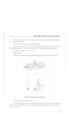 Cấu tạo và sửa chữa ô tô – xe máy part 4