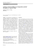"""Báo cáo hóa học: """"  Synthesis of Starch-Stabilized Ag Nanoparticles and Hg2+ Recognition in Aqueous Media"""""""