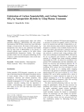 "Báo cáo hóa học: ""  Fabrication of Carbon Nanotube/SiO2 and Carbon Nanotube/ SiO2/Ag Nanoparticles Hybrids by Using Plasma Treatment"""