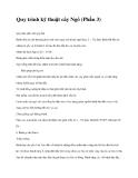 Quy trình kỹ thuật cây Ngô (Phần 3)