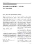 """Báo cáo hóa học: """"Double Rashba Quantum Dots Ring as a Spin Filte"""""""