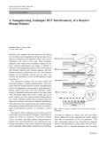 "Báo cáo hóa học: "" A Nanopatterning Technique: DUV Interferometry of a Reactive Plasma Polymer"""