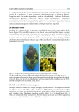 Fungicides for Plant and Animal Diseases Part 10