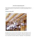 'Tối ưu hóa' căn bếp nhà bạn (P2)