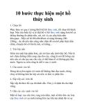 10 bước thực hiện một hồ thủy sinh