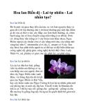 Hoa lan Biến dị - Lai tự nhiên - Lai nhân tạo?