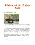 Kỹ thuật nuôi rắn Hổ Mang Chúa