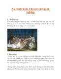 Kỹ thuật nuôi Thỏ quy mô công nghiệp