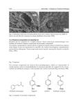 Salmonella A Dangerous Foodborne Pathogen Part 14
