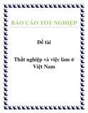 Báo cáo tốt nghiệp: Thất nghiệp và việc làm ở Việt Nam