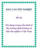 Đề tài: Tín dụng trong nền kinh tế thị trường định hướng xã hội chủ nghĩa ở Việt Nam