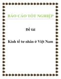 Đề tài: Kinh tế tư nhân ở Việt Nam