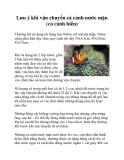 Lưu ý khi vận chuyển cá cảnh nước mặn (cá cảnh biển)