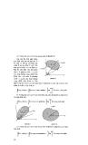 Bài tập toán học cao cấp tập 2 part 4