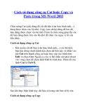 Cách sử dụng công cụ Cut hoặc Copy và Paste trong MS Word 2003