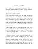 Khoa cử nho học ở Việt Nam Khoa cử