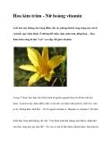 Hoa kim trâm - Nữ hoàng vitamin