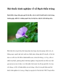 Bài thuốc kinh nghiệm về xổ Bạch thốn trùng