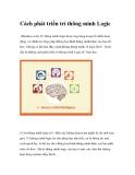 Cách phát triển trí thông minh Logic